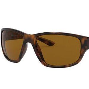 Ray-Ban Men's Sunglasses 4057 642 3N Tortoise